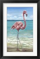 Framed Beach Walker Flamingo I