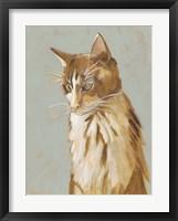 Framed Lap Cat II