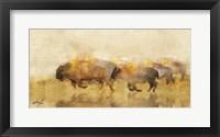 Framed Traveling Bison II