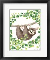 Framed Hanging Around Sloth II