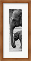 Framed Mothers Love