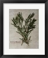 Framed Time-Honored Rosemary 2