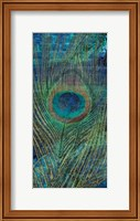 Framed Metropolitan Peacock 1