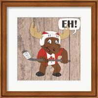 Framed Canadian Moose