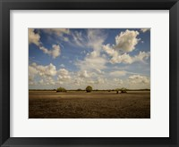 Framed Lonely Earth