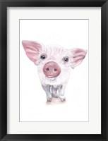 Framed Piglet
