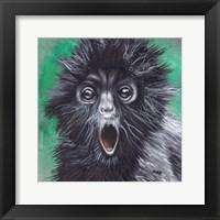 Framed Howler Monkey