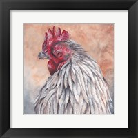 Framed Rooster Brown
