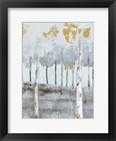 Framed Birch Metallic Gray Day 3