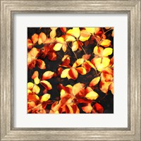 Framed Bunch Of Leaves