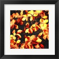 Framed Bunch Of Leaves