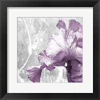 Framed Touch Of Plum 2