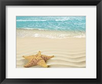 Framed Beach Star