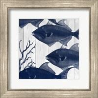 Framed Fishes 2