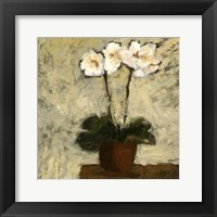 Framed Orchid Textures I