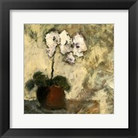 Framed Orchid Textures II