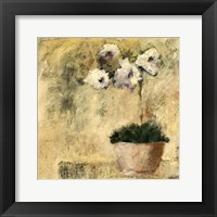 Framed Orchid Textures III