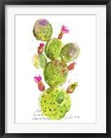 Framed Cactus Verse III