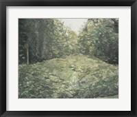 Framed Virginia Forest I