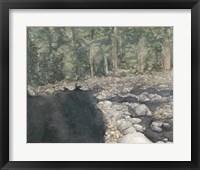 Framed Virginia Forest II