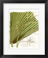 Framed Palm Melange I