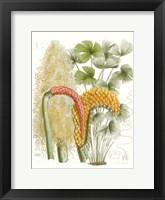 Framed Palm Melange IV