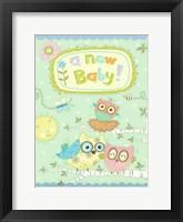 Framed Baby Owl II