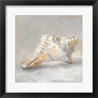 Framed Impressionist Shell Study I
