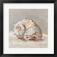 Framed Impressionist Shell Study II