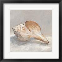 Framed Impressionist Shell Study III