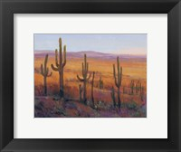 Framed Desert Light I