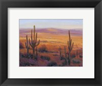 Framed Desert Light II