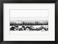 Framed Water Horses III