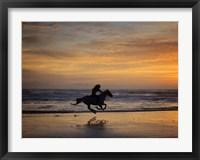 Framed Sunkissed Horses IV