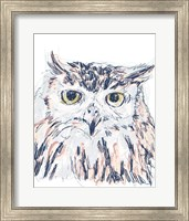 Framed Funky Owl Portrait III