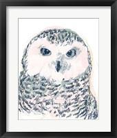 Framed Funky Owl Portrait IV