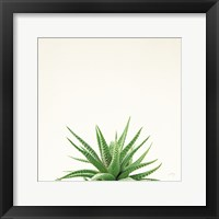 Framed Succulent Simplicity I Neutral