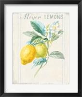 Floursack Lemon II v2 Framed Print