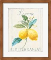 Framed Floursack Lemon III