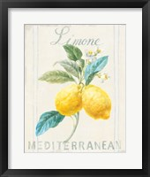 Framed Floursack Lemon III