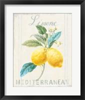 Floursack Lemon III Framed Print