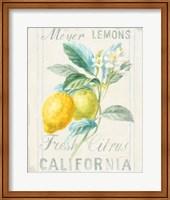 Framed Floursack Lemon II