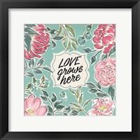 Framed Live in Bloom V