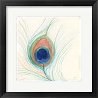 Framed Peacock Feather II