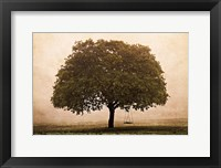 Framed Hopeful Oak