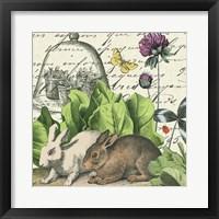 Framed Garden Rabbit II