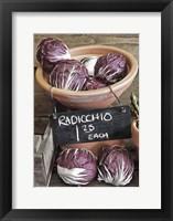 Framed Raddichio Rustic Display