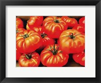 Framed Rustic Tomatoes