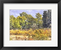 Framed Tuscan Countryside In Autumn