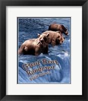 Framed Great Bear Rainforest